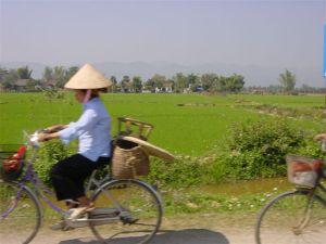 Speeding through the rice fields to the Laos border