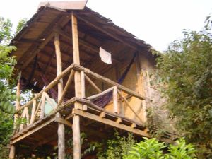 My bamboo hut - I could live here...