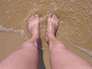 Brown and white feet - hairy legs