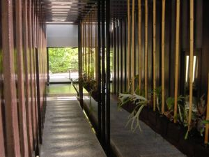 Super modern entrance with hanging plants and babbling water