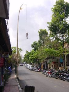 Typical Ubud street - with those Balinese sticks everywhere