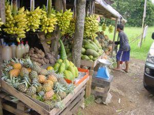 Sooooo many exotic fruits