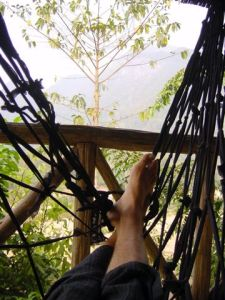 Hammock with a view - Muang Ngoi